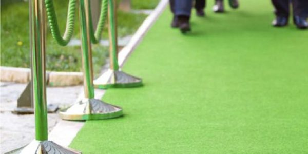 TURTYLE TO HONOR ACTOR ED BEGLEY JR. AT GREEN-CARPET OPENING AT NICKELODEON